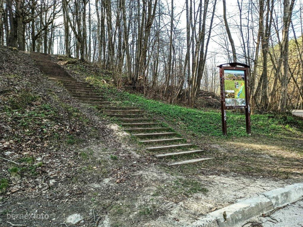 Tako pabaigoje - laiptai, kuriais galima patekti į Karoliniškių kraštovaizdžio draustinio dalį