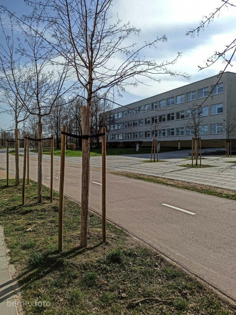 Alėjos pabaiga ties Vilniaus Sofijos Kovalevskajos vidurine mokykla