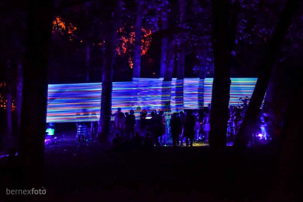 """Horizontalios švytinčios linijos miško apsuptyje - """"Beepositive 2016"""""""
