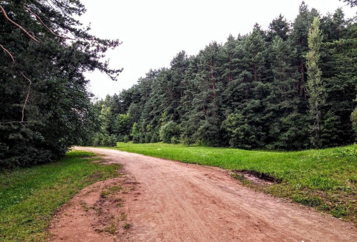 Karoliniškių kraštovaizdžio draustinio šiaurinės dalies takai